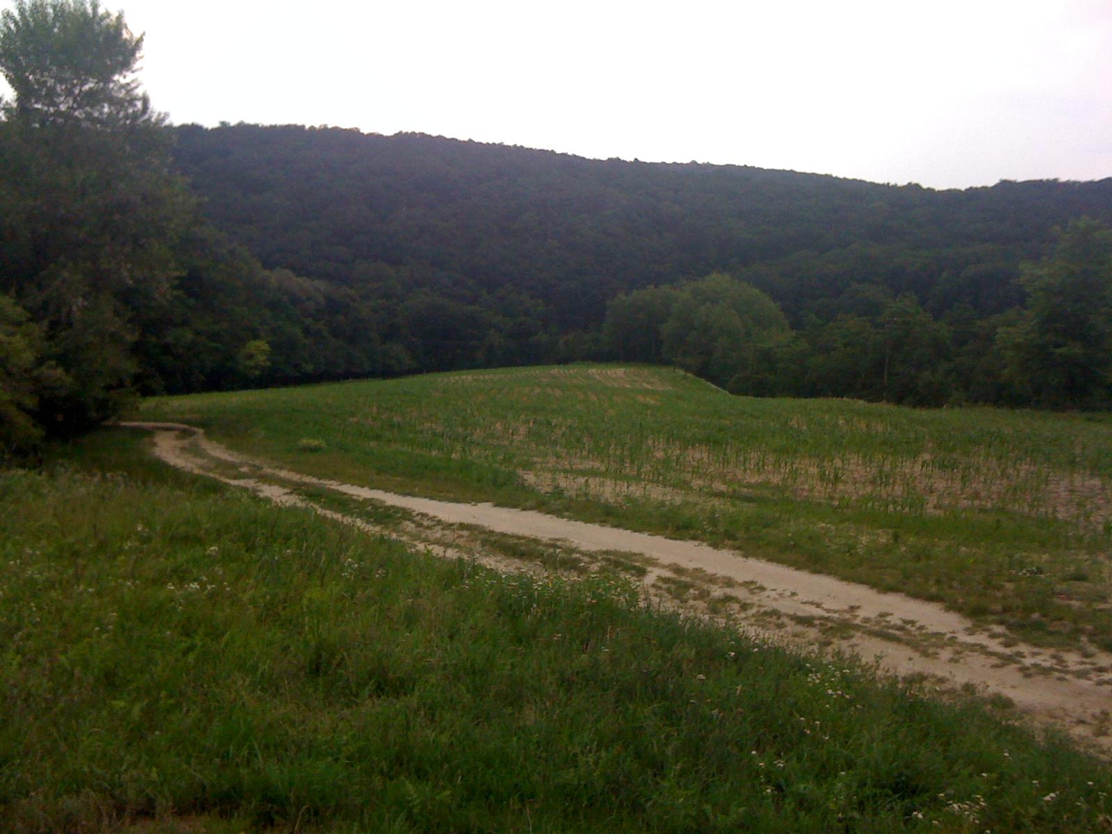 Prekrásny pozemok nad Devínom , aj na ranč