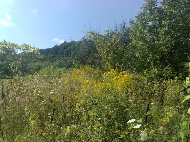 Perspektívny pozemok v Dúbravke,336m2