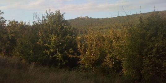 Exkluzívny pozemok v Borinke , 4100m2