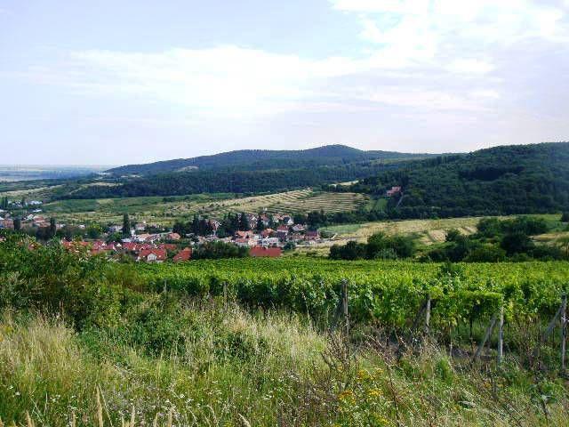 Lukratívne pozemky v Limbachu ,časť Machergut