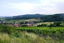 limbach-panorama