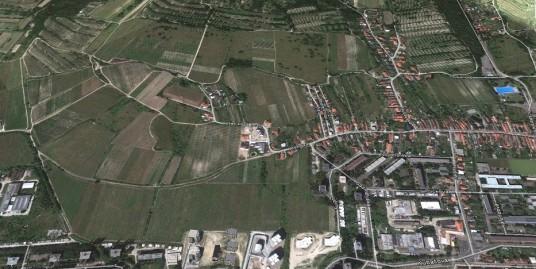 Vinohrad v Rači , 1000m2